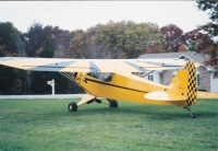 Piper Cub & the Reed Clipped Wing Conversion